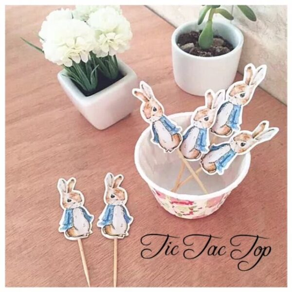Peter Rabbit Topper Picks - 12pcs